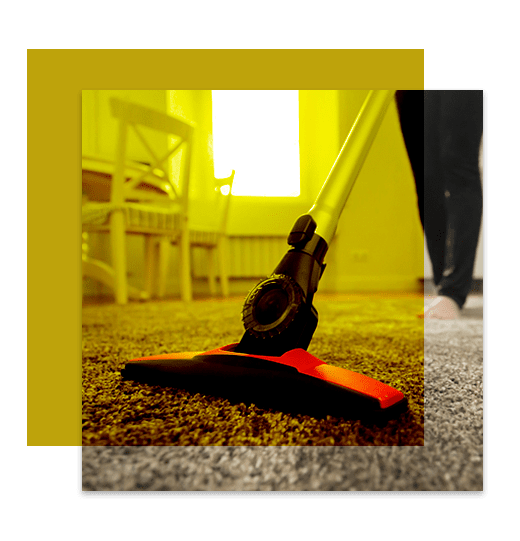 Professional Carpet Cleaning Yarralumla