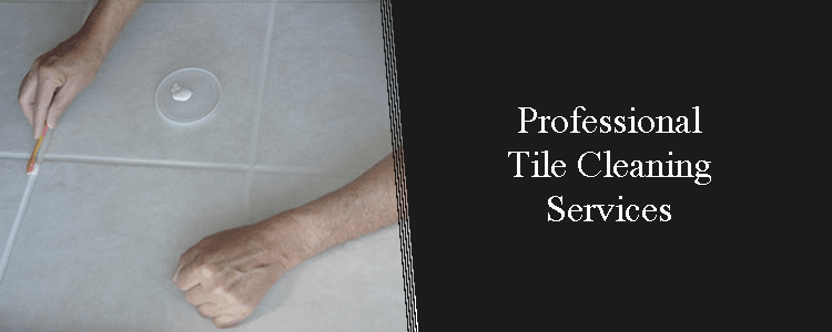Professionals Tile Cleaning